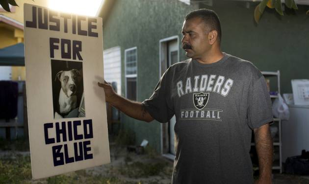 In this Monday, May 19, 2014 photo, former dog owner Arturo Gonzalez poses for a photo with a picture of his late dog at his home in Pico Rivera, Calif. Gonzalez's pit bull, Chico Blue, was fatally shot by sheriff's deputies 18 months ago when the deputies came to ask Gonzalez about a shooting that wounded his brother. The deputies say the dog foamed at the mouth while walking down the driveway. Feeling threatened by the dog, the deputies threw a chair, sprayed the dog with mace and shot him twice with a handgun. The majority of shootings in most U.S. police departments involve animals, usually dogs, and experts say a new series of videos can help change often quick-trigger decisions fueled by fear. (AP Photo/ Damian Dovarganes)