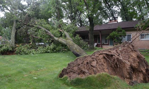 An uprooted tree lies in front of a home  \on West Minges, in Battle Creek, Mich., Tuesday, July 1, 2014. Severe thunderstorms packing high winds knocked down trees and power lines across parts of Michigan, leaving more than 230,000 without power and injuring a firefighter. (AP Photo/Battle Creek Enquirer, John Grap) NO SALES