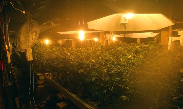 This April 12, 2011 photo provided by Arcata Police Department shows an indoor marijuana growing operation raided by police. Fed up with the proliferation of industrial-scale indoor growing operations taking over homes in residential neighborhoods, city leaders are asking voters to to adopt a stiff new tax on excessive electricity use designed to drive large-scale growers out of town. (AP Photo/Arcata Police Department)