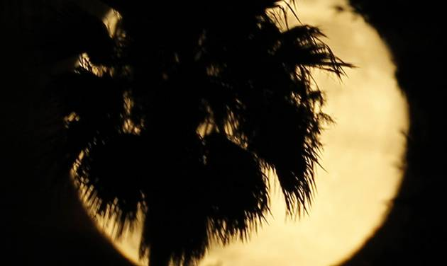 A palm tree is silhouetted against a supermoon in Whittier, Calif., Saturday, July 12, 2014. (AP Photo/Nick Ut)