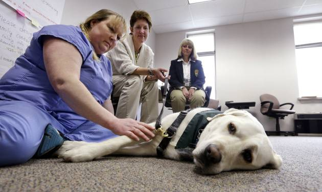 Medical investigator Deb Hollis, left, pets therapy dog Paddy on a break as handler Christi Dudzik, center, looks on with Jennie Thommen at the Snohomish County Medical Examiner's office, Wednesday, April 2, 2014, in Everett, Wash. The office is processing the remains of victims from the March 22 mudslide in nearby Oso, Wash., that has killed at least 29. Another 13 people are unaccounted for.(AP Photo/Elaine Thompson)
