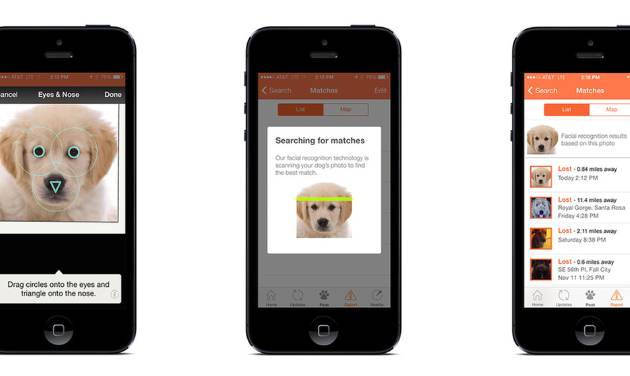 This undated illustration provided by FindingRover.com shows shows how a new smart phone application Finding Rover works. In May, San Diego County Animal Services became the first shelter system in the country to adapt the facial recognition plan. Every dog entering the county's three shelters will be put in the database. (AP Photo/FindingRover.com)