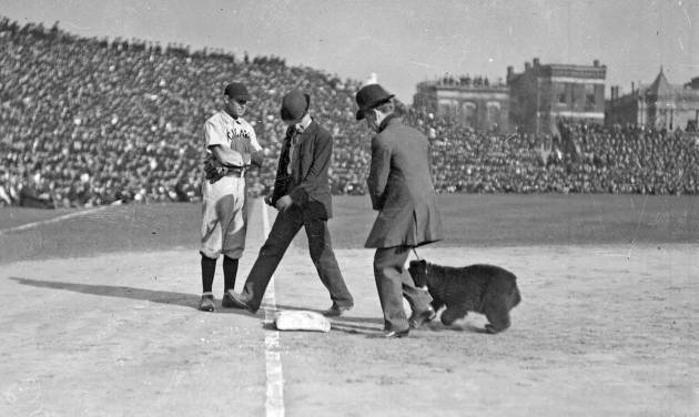 This 1916 photo provided by the Chicago History Museum shows two men walking with a bear cub near third base on the field at Weeghman Park in Chicago, later to be named Wrigley Field, during a Chicago Cubs baseball game. It is one of the memorable moments in Wrigley Field history as the ballpark approaches it's 100th anniversary. (AP Photo/Courtesy of the Chicago Historical Museum)