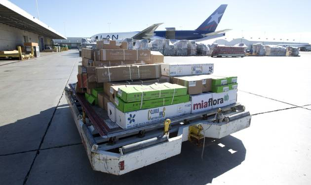 In this Jan. 9, 2014 photo, a load of flowers is rushed to a cooling unit at the Miami International Airport. In the weeks leading up to Valentine's Day, about 738 million flowers come through the airport. (AP Photo/J Pat Carter)