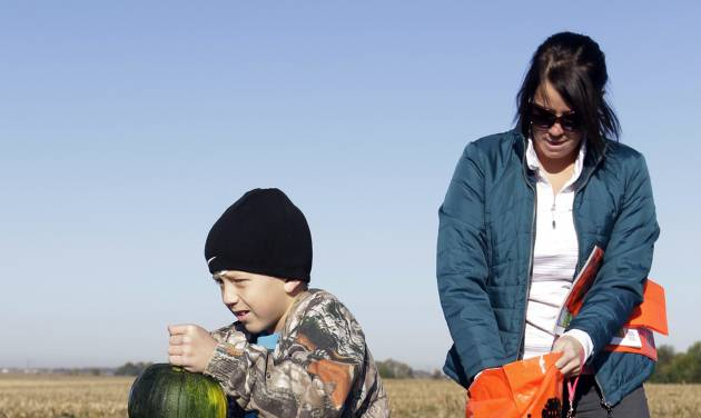 Austin Johnson, 8, of Greenfield, Ind., and his mother Michelle pick pumpkins in a patch at the Tuttle Orchards, in Greenfield, Ind., Monday, Oct. 8, 2012. The orchard had a good pumpkin crop but canceled public apple-picking this year after a series of sub-freezing nights zapped apple blossoms lured into early bloom by unusually warm March weather. (AP Photo/Michael Conroy)