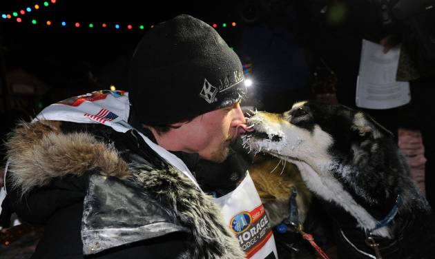 Dallas Seavey gets a kiss from one of his dogs after winning the 2014 Iditarod Trail Sled Dog Race in Nome, Alaska, Tuesday, March 11, 2014.  (AP Photo/The Anchorage Daily News, Bob Hallinen)  LOCAL TV OUT (KTUU-TV, KTVA-TV) LOCAL PRINT OUT (THE ANCHORAGE PRESS, THE ALASKA DISPATCH)