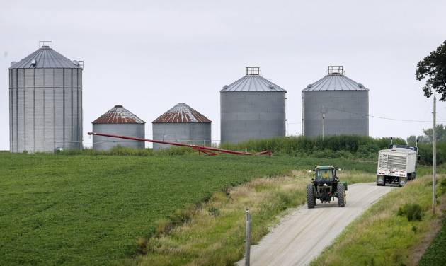 In this Aug. 5, 2014 photo a farmer drives his tractor past a soybean field toward grain storage bins near Ladora, Iowa. The nation's corn and soybean farmers are on track to produce record crops this year as a mild summer has provided optimum growing conditions. (AP Photo/Charlie Neibergall)
