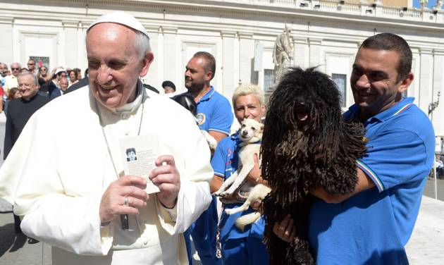 In this photo provided by the Vatican newspaper L'Osservatore Romano, Pope Francis is shown a dog by a member of the Federazione Italiana Sport Cinofili (Italian Federation of Canine' Sports), following his weekly general audience at the Vatican, Wednesday, Sept. 18, 2013. (AP Photo/L'Osservatore Romano, ho)
