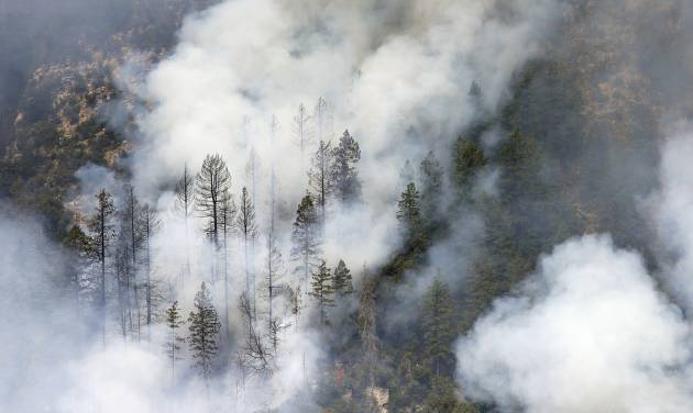 Smoke shrouds burned pine trees as the Slide Fire burns up Oak Creek Canyon on Friday, May 23, 2014, near Flagstaff, Ariz.  The fire has burned approximately 7,500 acres and is five percent contained. (AP Photo/Ross D. Franklin)