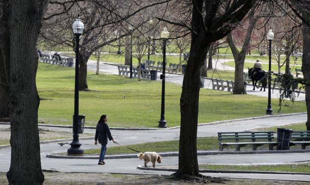 FILE - This April 6, 2011 file photo shows a woman walks a dog through Boston Common in Boston. With a view of the beautiful golden-topped State House, Boston Common is America's oldest public park. Located in the center of the city at the start of the Freedom Trail, the park remains a vibrant part of city life. (AP Photo/Charles Krupa, File)