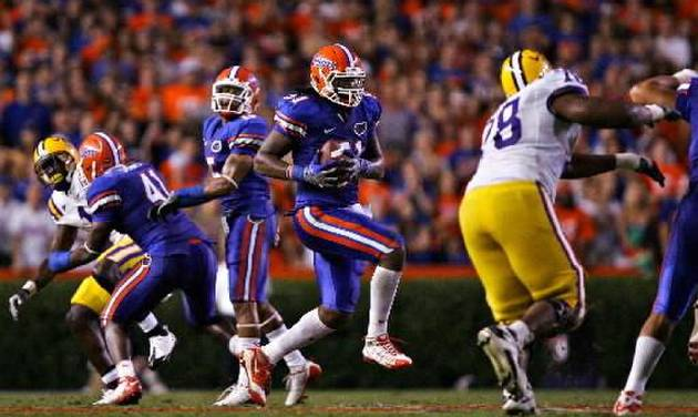 University of Florida's Brandon Spikes intercepts the ball early in the fourth quarter during UF's home win against LSU.--(Brandon Kruse/ The Gainesville Sun)