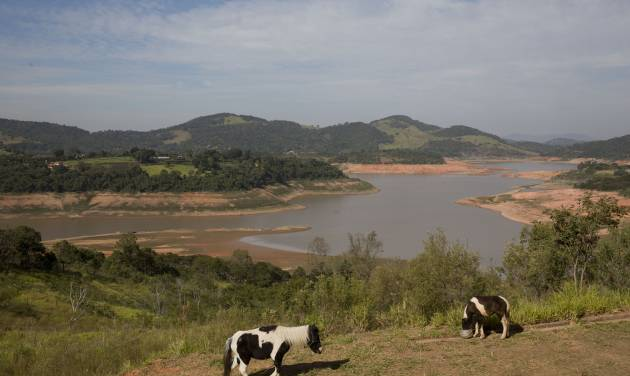 In this May 14, 2014 photo, a horse walks in a field near the Jaguari dam, which is part of the Cantareira System, responsible for providing water to the Sao Paulo metropolitan area, in Braganca Paulista, Brazil. The worst drought in more than 80 years is hitting Sao Paulo, Brazil's largest city just as it prepares for the tens of thousands of foreigners expected at the tournament opener. (AP Photo/Andre Penner)