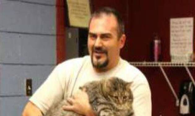 """This undated photo released by the Maricopa County Animal Care & Control shelter, shows shelter personnel holding """"Meatball"""", a 36-pound cat in Phoenix. """"Meatball"""" is temporarily staying in an office at the shelter because he's too large to fit into a standard kennel.  The shelter is trying to place him with a rescue organization that helps overweight cats. (AP Photo/Maricopa County Animal Care & Control)"""