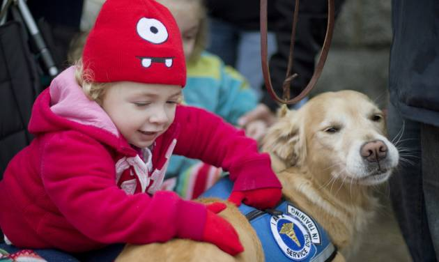 FILE - In this Tuesday, Dec. 18, 2012 file photo, Addison Strychalsky, 2, of Newtown, Conn., pets Libby, a golden retriever therapy dog, during a visit from the dogs and their handlers to a memorial for the Sandy Hook Elementary School shooting victims in Newtown. As the shock of Newtown's horrific school shooting starts to wear off, as the headlines fade and the therapists leave, residents are seeking a way forward through faith, community and a determination to seize their future. (AP Photo/David Goldman, File)