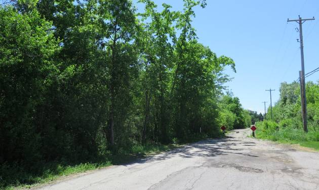 The site in Waukesha, Wis.,  where a bicyclist found a 12-year-old girl who had 19 stab wounds is seen on Tuesday June 3, 2014.  Two   12-year-old girls are accused of stabbing the girl in the woods to please a fictional creature they learned about online. (AP Photo/Carrie Antlfinger)