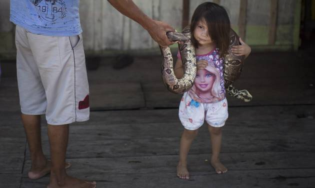 In this May 20, 2014 photo, Evandro Correia da Silva, left, holds a snake as his 3-year-old daughter Kelly Silva places it around her neck on their family's floating house in the Lago do Janauari, or Solimoes River, near Manaus, Brazil. Their exotic houseguests help the 35-year-old fisherman and his family eke out a living on the opposite bank from Manaus, a World Cup host city where the U.S., English and Italian teams will be among those battling it out. (AP Photo/Felipe Dana)