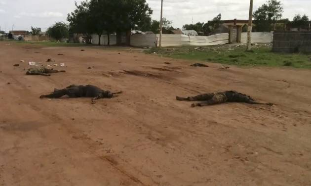 """In this image taken from video, dead bodies lie on the road near Bentiu, South Sudan, on Sunday, April 20, 2014. The United Nations' top humanitarian official in South Sudan, Toby Lanzer, told The Associated Press in a phone interview on Tuesday, April 22, 2014, that the ethnically targeted killings are """"quite possibly a game-changer"""" for a conflict that has been raging since mid-December and that has exposed longstanding ethnic hostilities. There was also a disturbing echo of Rwanda, which is marking the 20th anniversary this month of its genocide that killed 1 million people. (AP Photo/Toby Lanzer, United Nations)"""