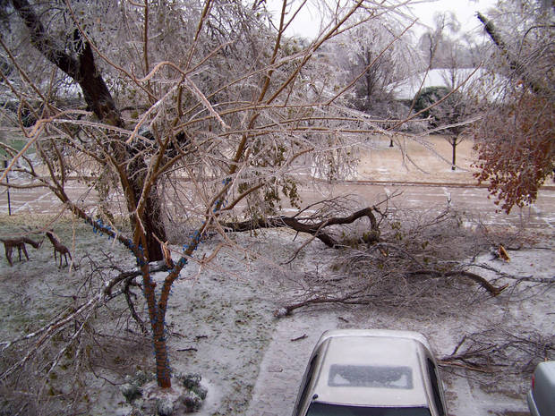 WINTER / COLD / WEATHER / ICE STORM: MyNewsOK contributor Tim Rasmussen photographed this scene Monday in Nichols Hills. Icy conditions plagued most of the state Monday, leading to downed tree limbs, dangerous driving conditions and lost power for thousands. BY TIM RASMUSSEN, MYNEWSOK CONTRIBUTOR ORG XMIT: 0712101525340777