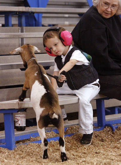 Paul Goodchild, 4, of Norman, discourages Emmy, his Nigerian Dwarf goat, from getting on the bleachers with him  after showing her in the three to six month class during goat judging at the Oklahoma State Fair on Wednesday, Sep. 19, 2012. This is Goodchild's first time to show an animal at the state fair. Emmy won a second place ribbon; Paul was awarded a first place ribbon for showmanship.  Photo by Jim Beckel, The Oklahoman.