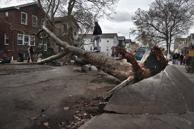 A girl plays on a fallen tree on Brighton 6th Street in the Brighton Beach area of Brooklyn in New York on Thursday, Nov. 1, 2012. (AP Photo/Bebeto Matthews) ORG XMIT: NYBM301