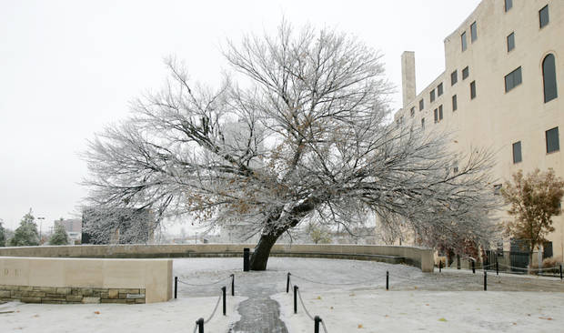WINTER / COLD / WEATHER / ICE STORM 2007: Ice covers the Survivor Tree at the Oklahoma City National Memorial in Oklahoma City, Okla. Dec. 10, 2007.  BY STEVE GOOCH, THE OKLAHOMAN.  ORG XMIT: KOD