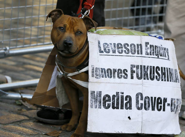 A protestor's dog wears a banner outside the Queen Elizabeth II Conference Centre where Lord Justice Brian Leveson released his report, after a year long inquiry, into the culture and practices of the British press and his recommendations for future regulation to prevent phone hacking, data theft, bribery and other abuses, London, Thursday, Nov. 29, 2012. (AP Photo/Kirsty Wigglesworth)