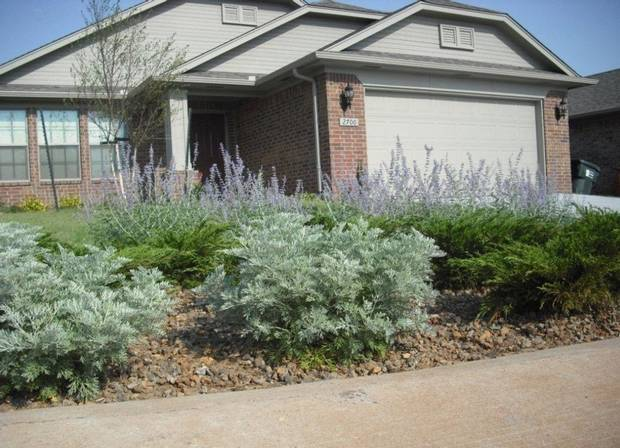 A rain garden can appear somewhat unkempt compared to what people are used to seeing along the streets in a suburban neighborhood. PHOTO PROVIDED BY IDEAL HOMES