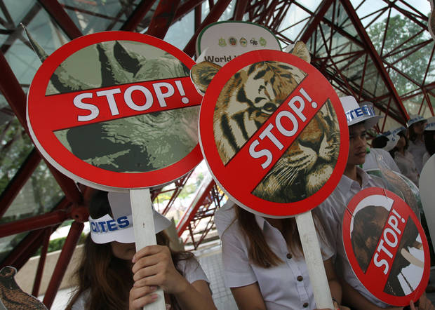 "Thai activists hold signs against illegal wildlife trade during the Convention on International Trade in Endangered Species, or CITES,  in Bangkok Sunday, March. 3, 2013. How to slow the slaughter and curb the trade in ""blood ivory"" will be among the most critical issues up for debate at the 177-nation Convention on International Trade in Endangered Species, that gets under way Sunday in Bangkok. And the meeting's host, Thailand, will be under particular pressure to take action.(AP Photo/Sakchai Lalit)"