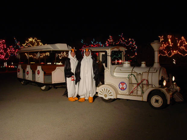Decorations and people dressed as penguins at Yukon's Christmas in the Park. Photo provided. <strong></strong>