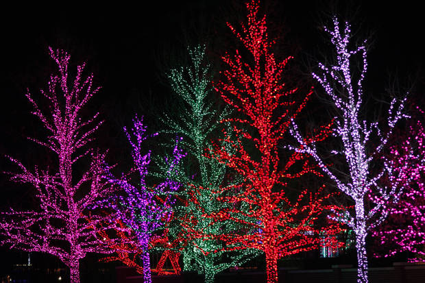 Trees lit for the holidays along Western on the Chesapeake Energy campus, Wednesday December 5, 2012. Photo by Doug Hoke, The Oklahoman