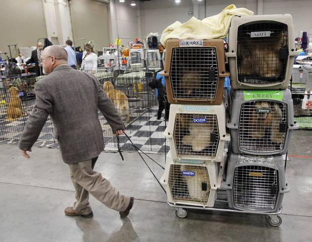 David Downing, of Gatesville, Texas, rolls crates of dogs back to the grooming area of the exhibit hall during the OKC Summer Classic Dog Shows at the Cox Convention Center in Oklahoma City, Thursday, June 30, 2011. Photo by Nate Billings, The Oklahoman ORG XMIT: KOD