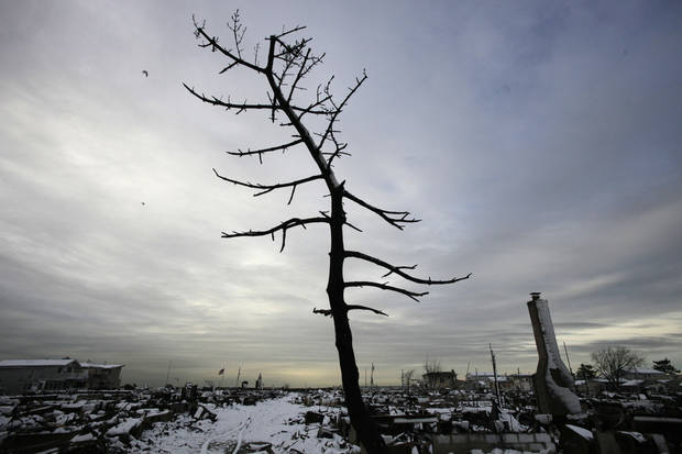 A  fire-scorched tree stands in the landscape of Breezy Point after a Nor'easter snow, Thursday, Nov. 8, 2012 in New York.  The beachfront neighborhood was devastated during Superstorm Sandy when a fire pushed by the raging winds destroyed many homes.  (AP Photo/Mark Lennihan) ORG XMIT: NYML103