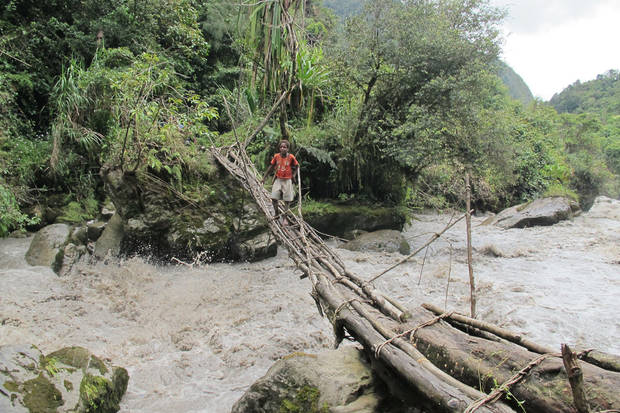 Makeshift bridges were used to cross rapid waters as Mike annd Libby Dillard attempted to traverse a jungle to climb Carstensz Pyramid. <strong>provided</strong>