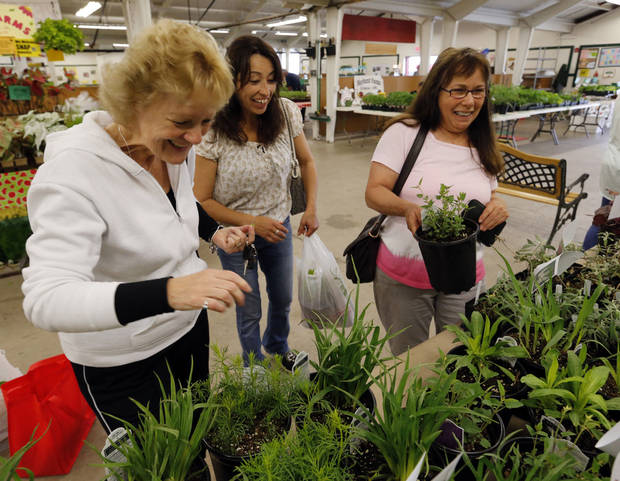 Kerstin Perea, Nellie Alexander and Annie Potts look for plants and vegetables at the Farmer's Market at the Cleveland County Fairgrounds on Wednesday, April 17, 2013 in Norman, Okla.  Photo by Steve Sisney, The Oklahoman