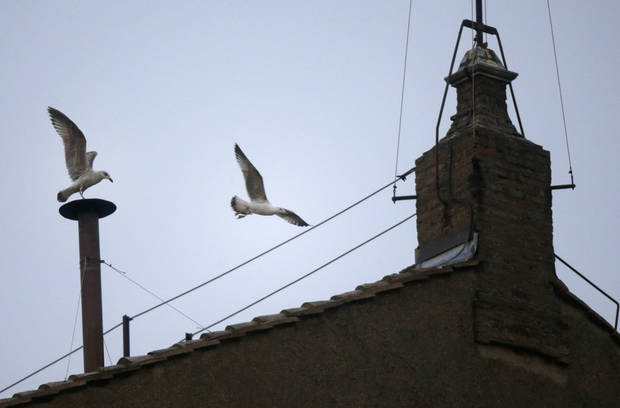 A seagull sits on the chimney on the roof of the Sistine Chapel while another flies past in St. Peter's Square during the second day of the conclave to elect a new pope at the Vatican, Wednesday, March 13, 2013. (AP Photo/Gregorio Borgia) ORG XMIT: VAT119