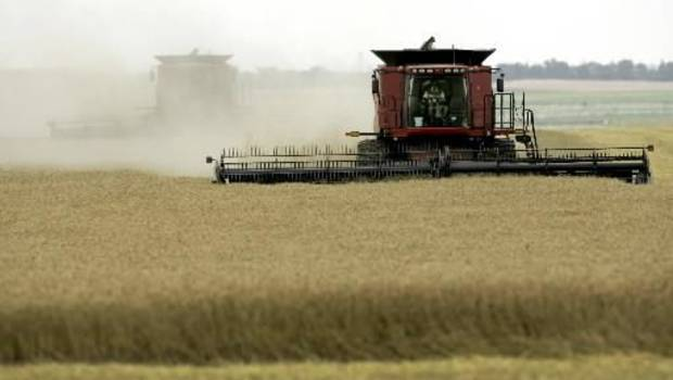 A combine cuts  wheat in June in southwestern Kansas near the town of Mullinville. In  Oklahoma, unusually wet weather spelled disaster for many  wheat farmers.