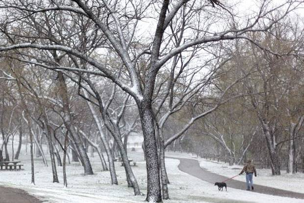 A dog walker uses the trails in the snow at Hafer Park, Saturday, March, 28, 2009, in Edmond, Okla. PHOTO BY  SARAH PHIPPS, THE OKLAHOMAN
