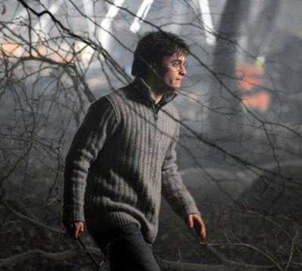 "Daniel Radcliffe in ""Harry Potter and the Deathly Hallows - Part 1"""