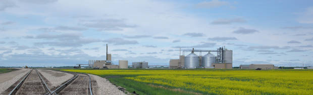 Northstar Agri Industries canola refinery plant is shown in Hallock, Minn., amid a field of canola. PHOTO PROVIDED &lt;strong&gt;&lt;/strong&gt;
