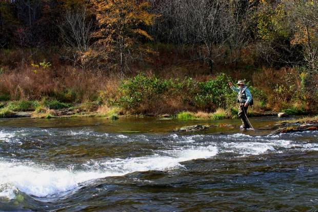 Clif Sikes of Earlsboro fly fishes on the Lower Mountain Fork River in McCurtain County.
