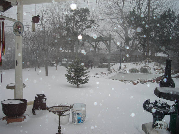 Yard in Warr Acres with Koi pond covered in snow.  Submitted by Mary Lee Scott.