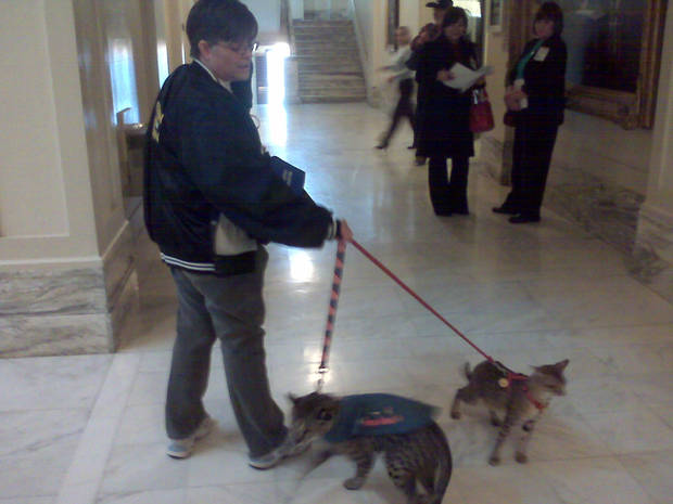 Deborah Milette walks with her service cat at the state Capitol on Tuesday.