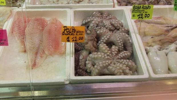 Want a little octopus for dinner? Buy it fresh at Mercato Coperto.