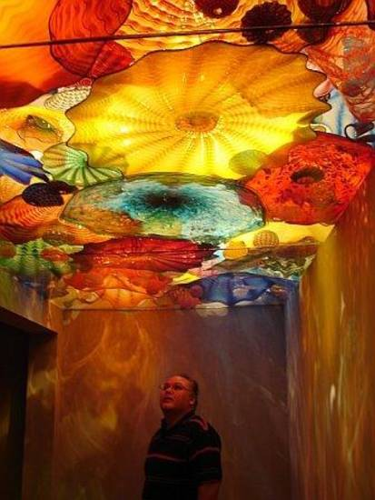 "Hubby Tony Jimenez looking at the amazing ""Chiluli""(spelling?) glass in the ceiling at Downtown OKC Art Museum.<br/><b>Community Photo By:</b> Victoria Jimenez<br/><b>Submitted By:</b> Victoria, Harrah"