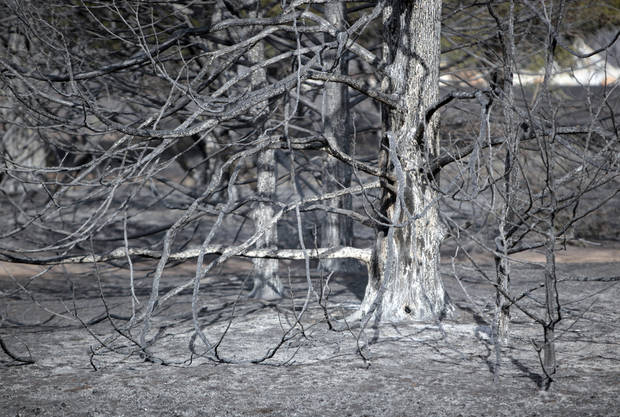Wildfire damage is pictured , Sunday, Aug. 5, 2012, in Glencoe, Okla., after wildfires moved through the area Saturday. Photo by Sarah Phipps, The Oklahoman