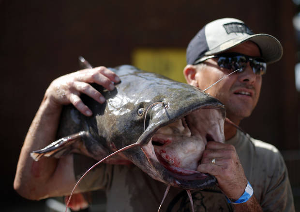 Keith Compton holds his catfish at the weigh-ins at the 14th annual Okie Noodling Tournament at Wacker Park in Pauls Valley, Okla., Saturday, June 22, 2013. Photo by Sarah Phipps, The Oklahoman