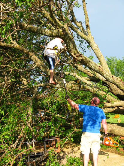 Judy Pendergraft?s grandsons, Andrew Peery, left, and Jeremy Peery help her cut down a fallen tree in her driveway in the Hidden Valley addition in southeast Edmond. PHOTO BY LILLIE-BETH BRINKMAN, THE OKLAHOMAN <strong></strong>