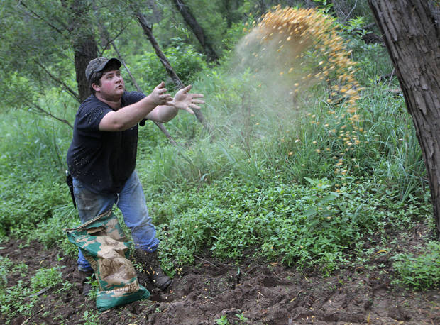 Josh Kinsey throws corn, hoping to attract pigs to a feeder that was set up nearby, during a hunting trip near Indianola, Okla., Saturday, July 7, 2012.  Photo by Garett Fisbeck, The Oklahoman