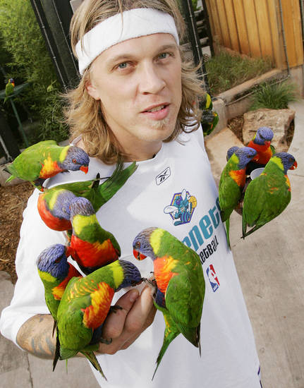 "New Orleans/Oklahoma City Hornets NBA basketball player Chris ""Birdman"" Andersen poses for a photo with Lorikeets in the Lorikeet exhibit at the Oklahoma City Zoo, October 11, 2005 in Oklahoma City. By Nate Billings/The Oklahoman"