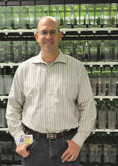 Dr. Kimble Frazer is using zebrafish to better understand the intricacies of T-cell cancers. Photo provided